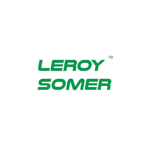LeroySomer_Logo.jpg
