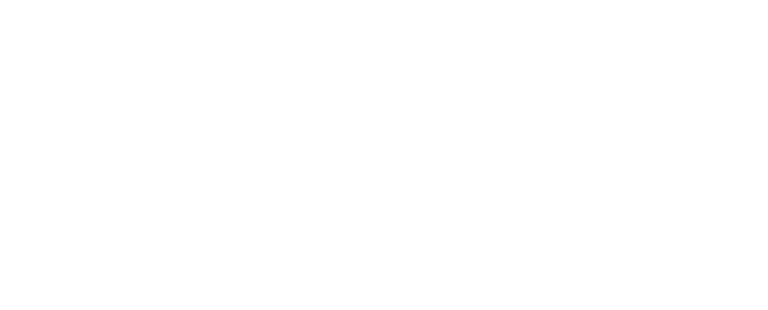 Mendes Group