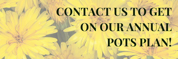 Contact us to get on our Annual pots Plan!.png
