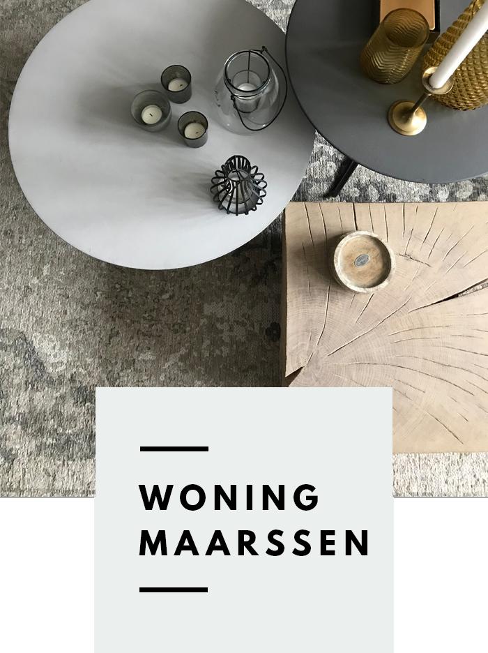 Interieurontwerp design advies Maarssen 1.png