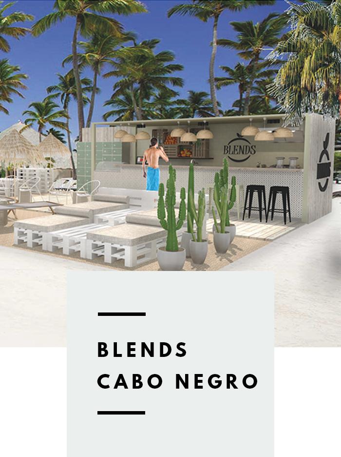 Interieurontwerp beach bar BLENDS Cabo Negro.jpg