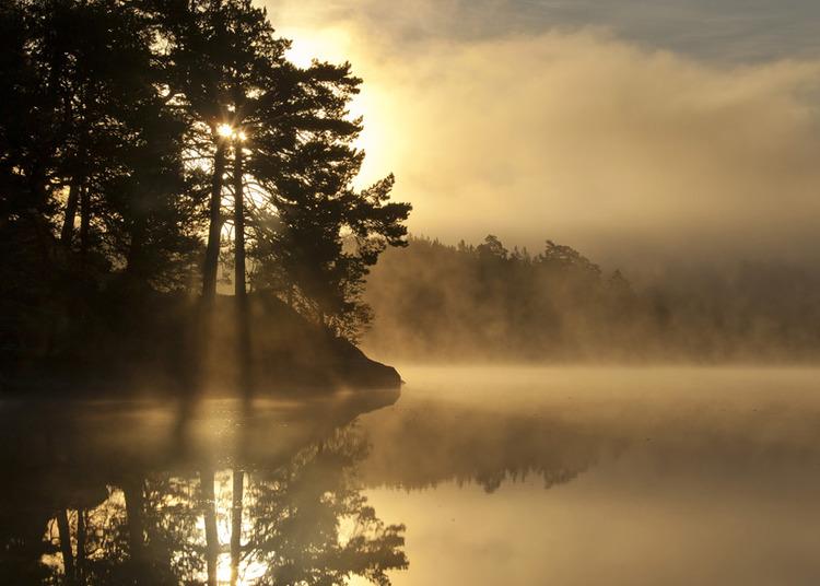 © Fredrik Neregård, Höstmorgon vid sjön Vin i Östergötland