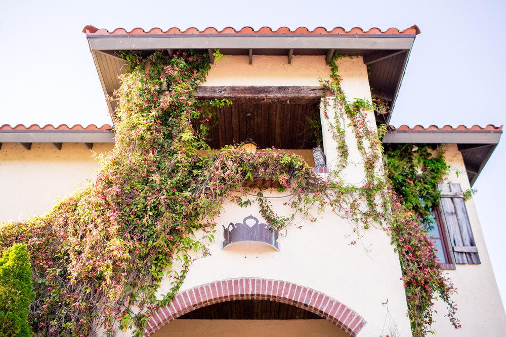 Olive Branch Styled Shoot-0080.jpg