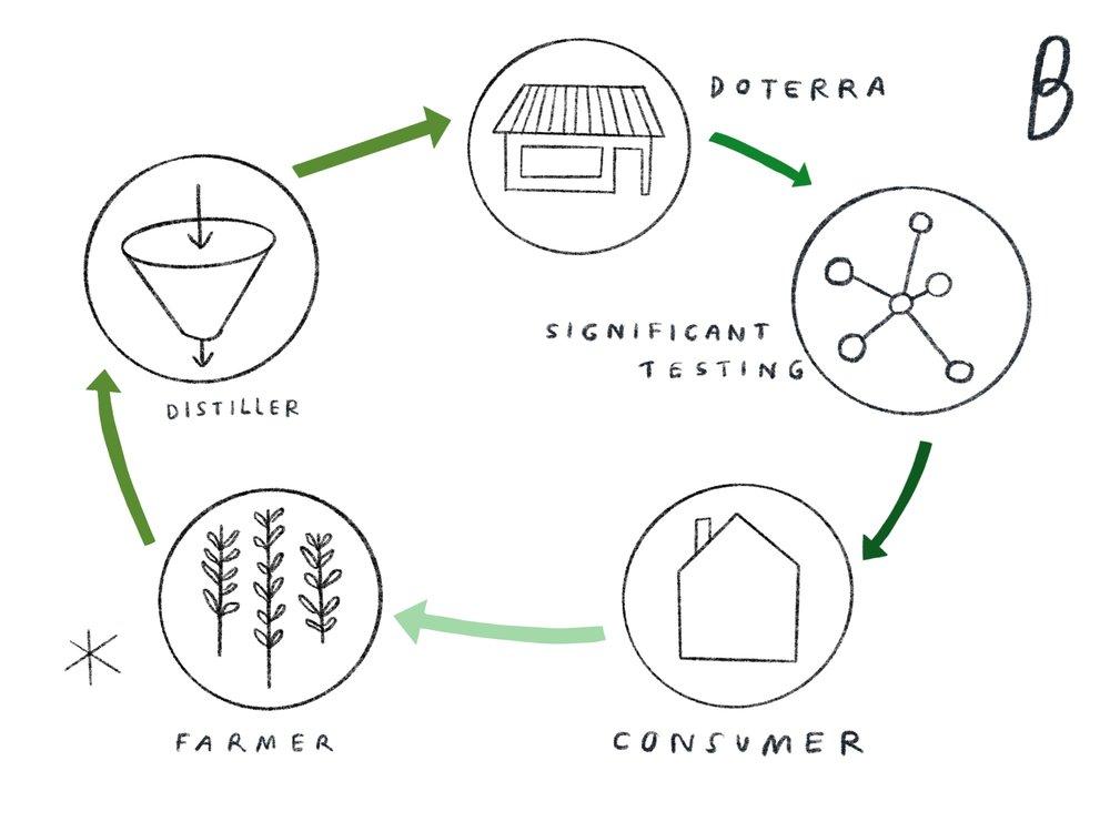 Farmer > Distiller > doTERRA > Significant Testing > Consumer >