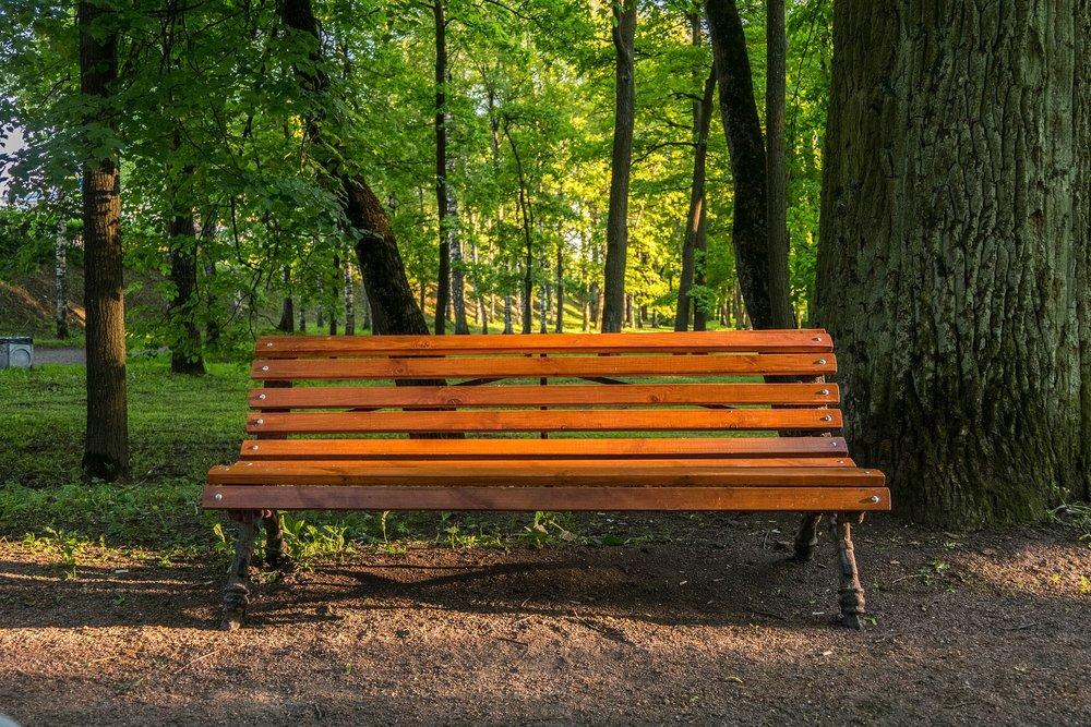 bench-2461680_1280.jpg