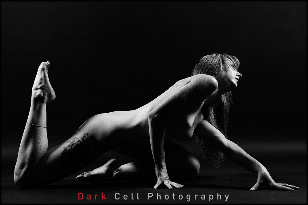 DarkCell_Horizontal_01.jpg