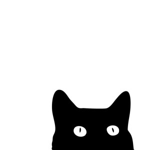 cat-art-print-17-x-17-unframed--[2]-33278-p