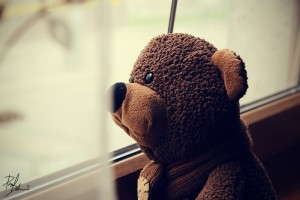 alone_teddy_by_hombre_cz