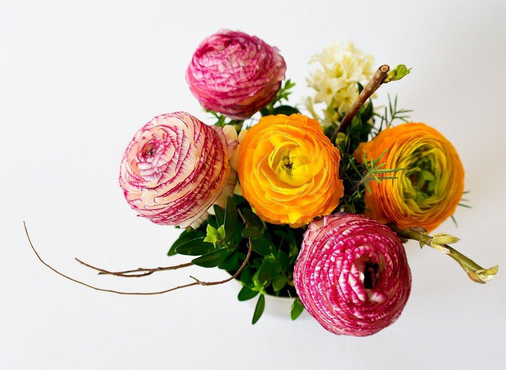 flowers-plant-blossom-bloom.jpg