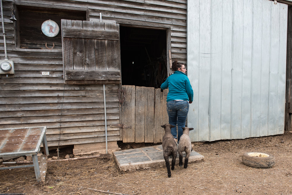Angie Grant enters her barn to bottle feed her lambs.