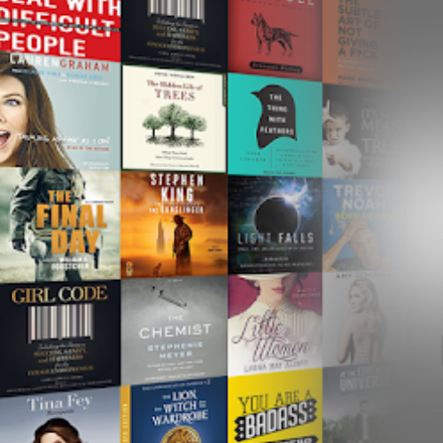 "Audible   Audiobooks! These are great to listen to while you're driving, doing dishes or going for a walk. I've also always used audiobooks (they used to be cassettes) to help me fall asleep at night. A great way to ""read"" without reading.  Check them out:  https://www.audible.ca"