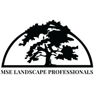 A-MSE-landscape-professionals.png