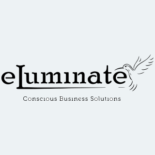 ELUMINATE FINANCIAL SERVICES VISTA, CA