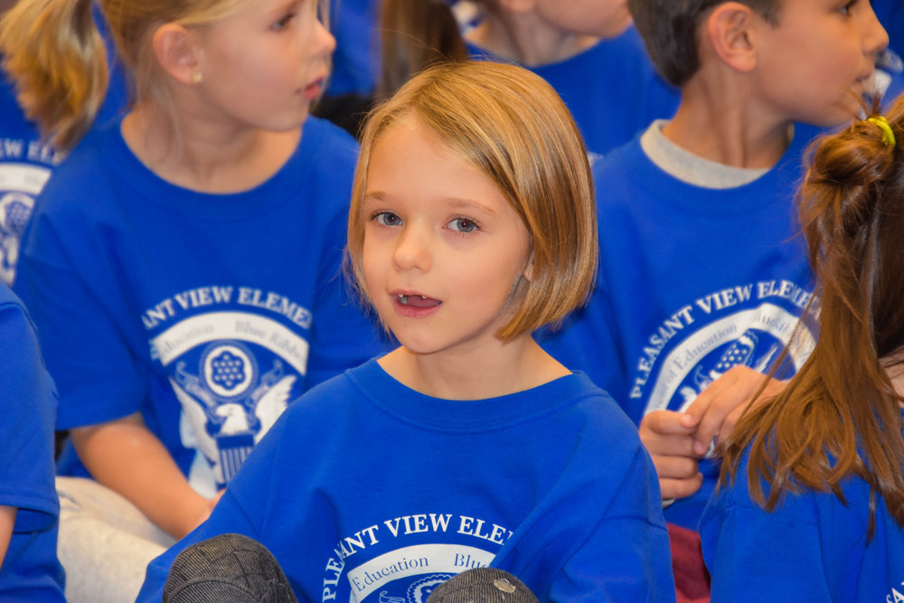 PLEASANT VIEW ELEMENTARY SCHOOL NATIONAL BLUE RIBBON SCHOOL: TOGETHER WE ARE