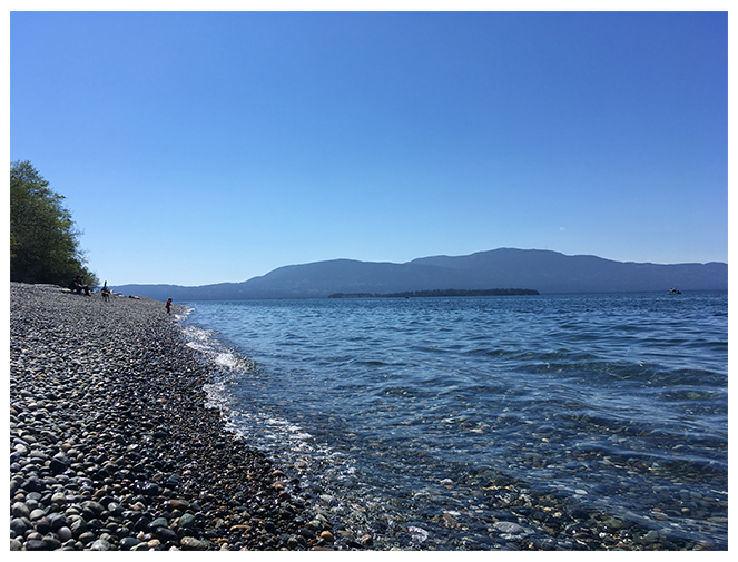 Beach on the San Juan Islands