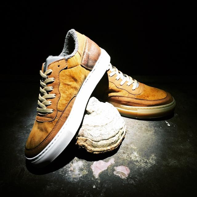 Fungi Shoe.jpg