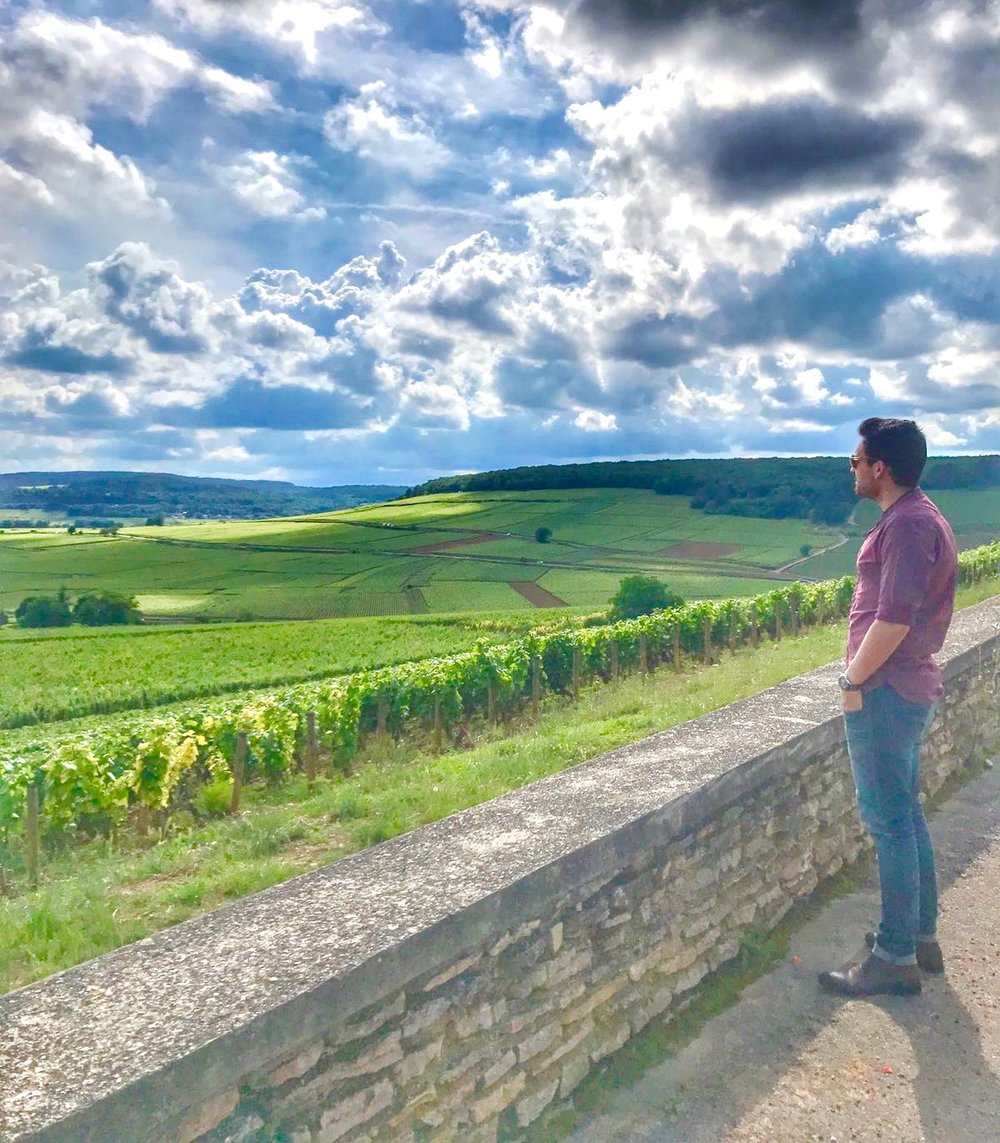 """My wine discovery has been an experience I keep with me forever, the valuable teachings I've learnt from the winemakers, witnessing their hard work and passion makes me love what I do!""   Corton Charlemagne"