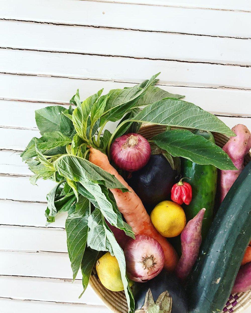 Fresh vegetables from the market in Muramvya.
