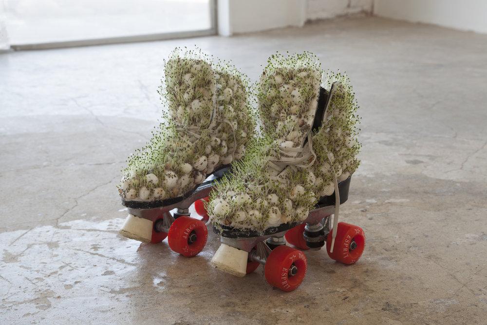 untitled , 2018. Seashells, rollerskates, chia seeds.