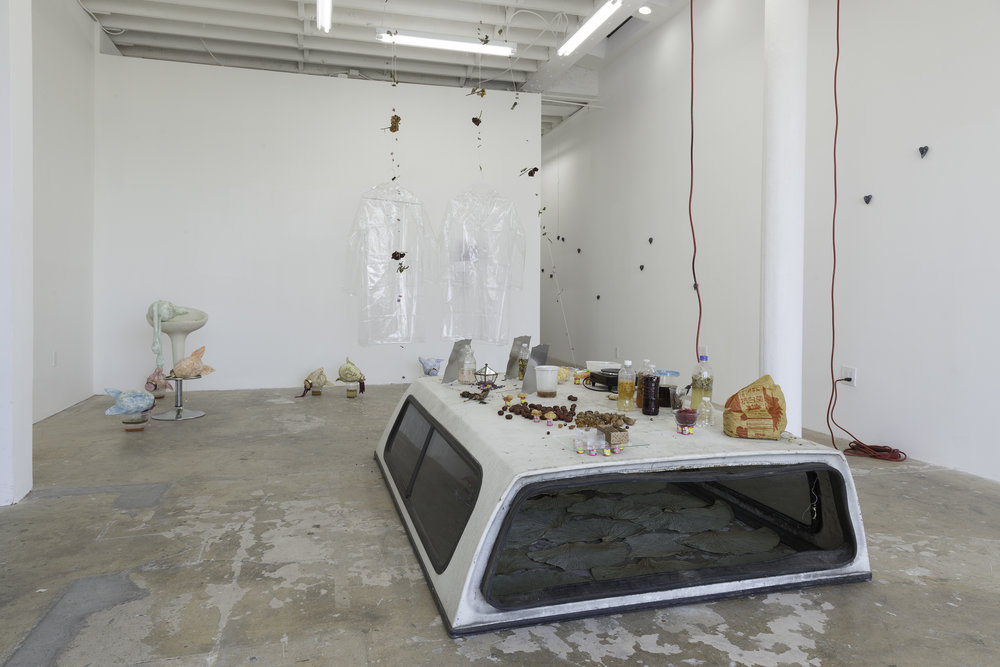 "Installation view, Catalina Ouyang, ""DEATH DRIVE JOY RIDE"" 2018. Make Room, Los Angeles"