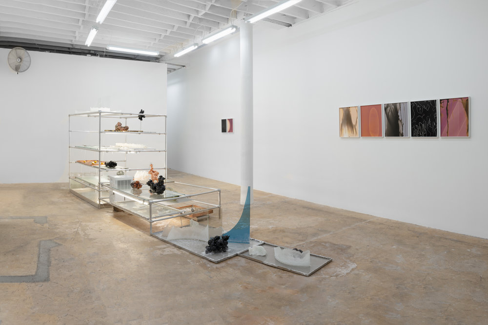 Installation View (opening) of  Badwater , September 1st , 2018 - October 28th, 2018.