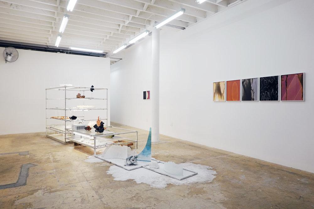 Badwater Installation , 2018. Mixed Media.