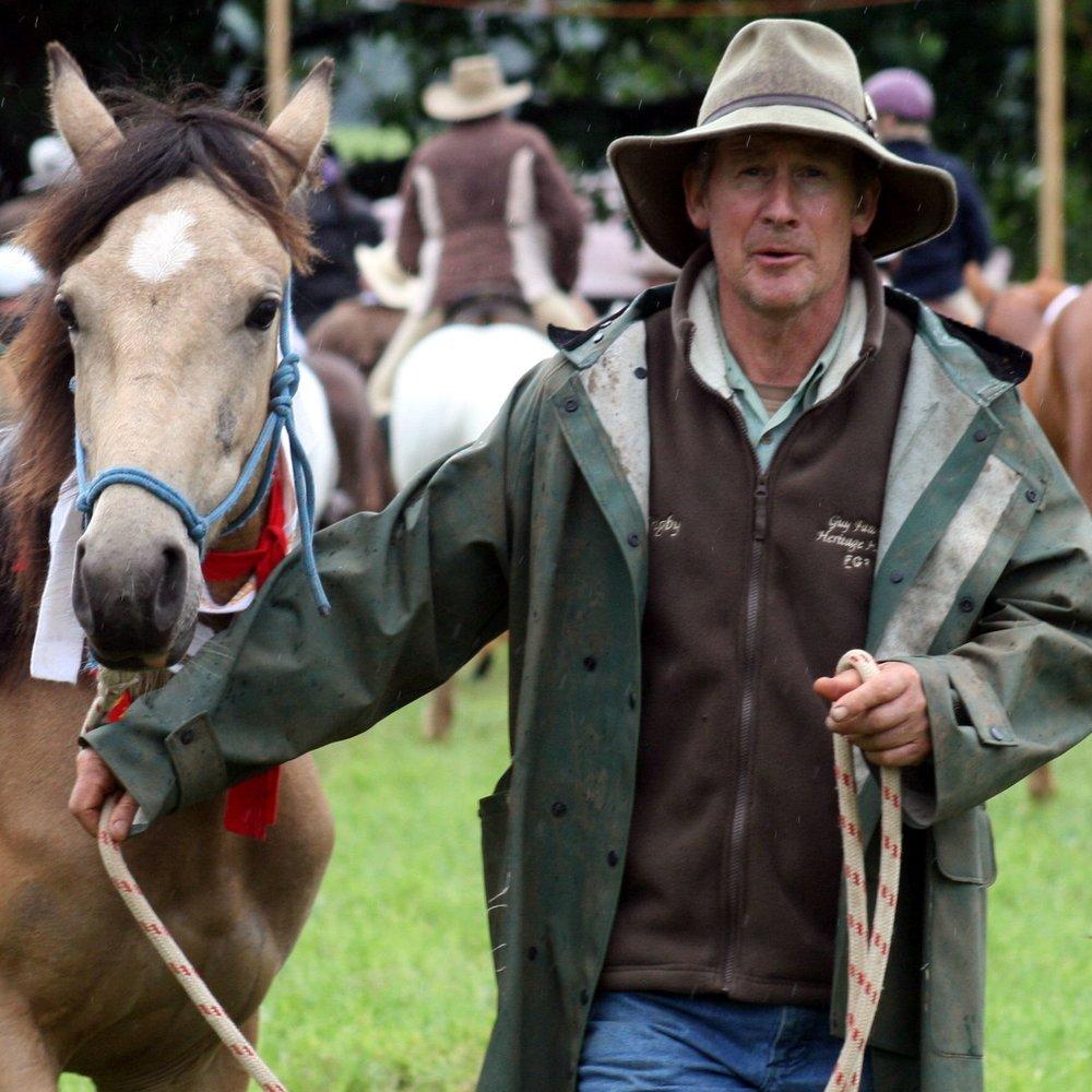 Dorrigo Show Horses.JPG