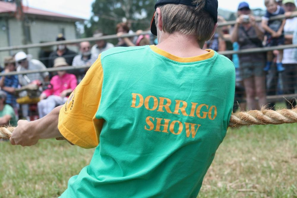 Dorrigo Show 1838.JPG