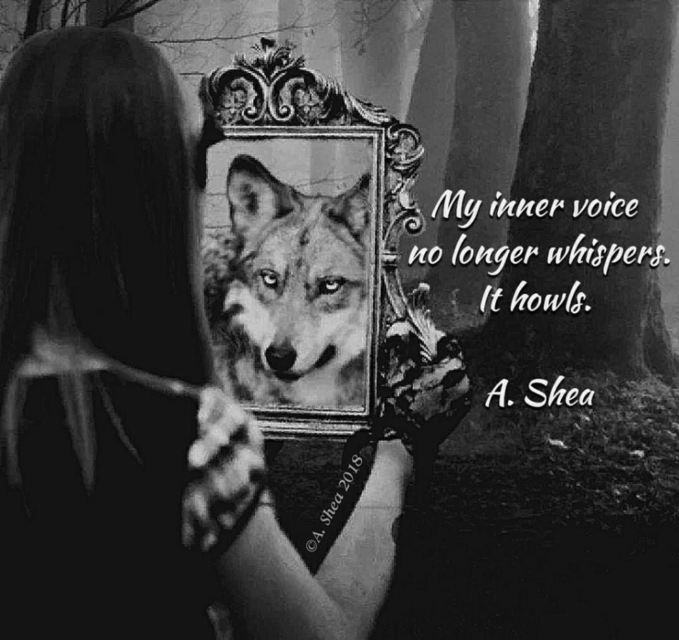 voice howl.jpg