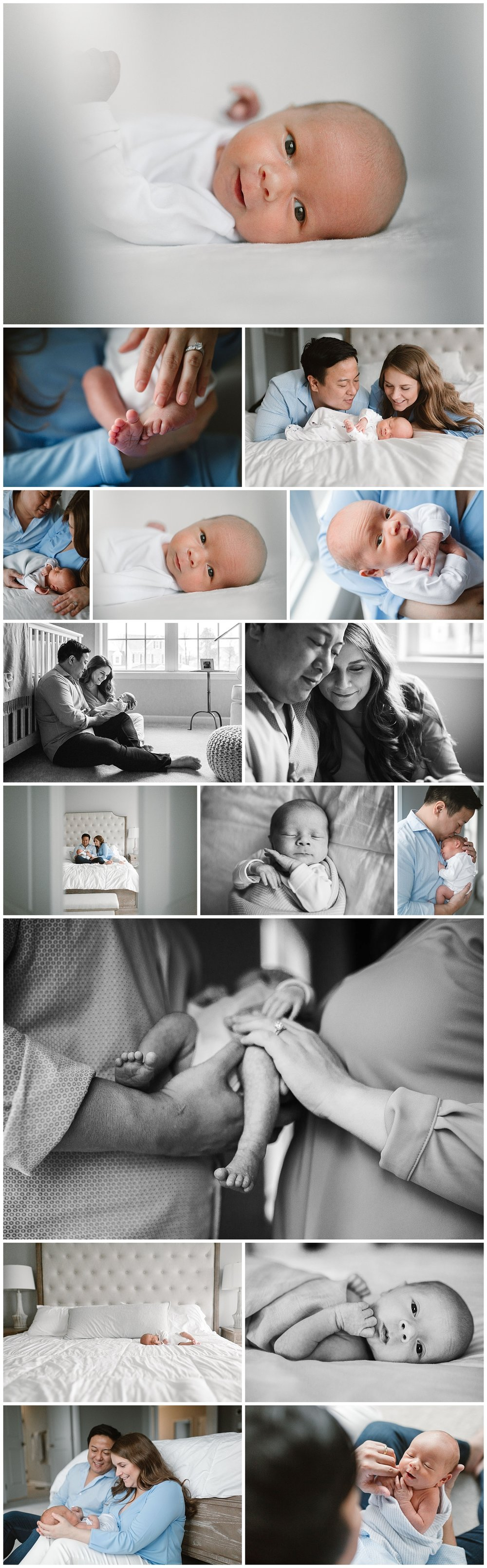 Aldie, VA Newborn Session