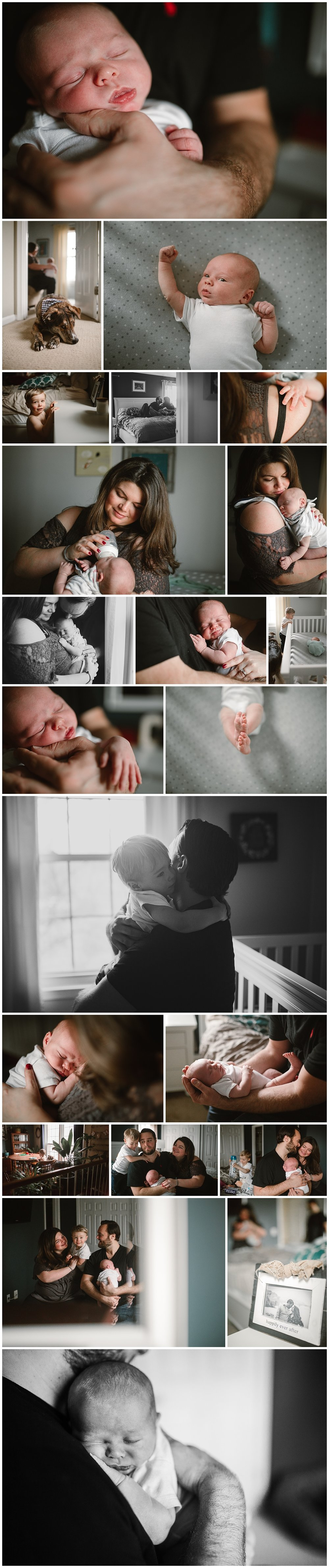 Leesburg, VA Newborn session