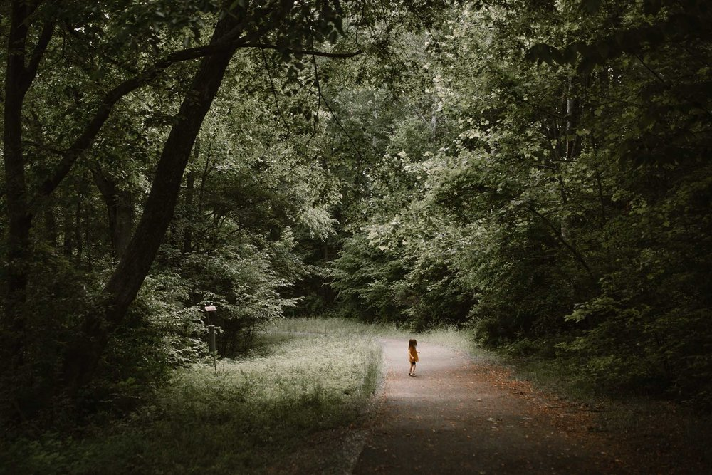Toddler walking down a path through a dark forest, standing in a small patch of light at Cabell's Mill in Chantilly