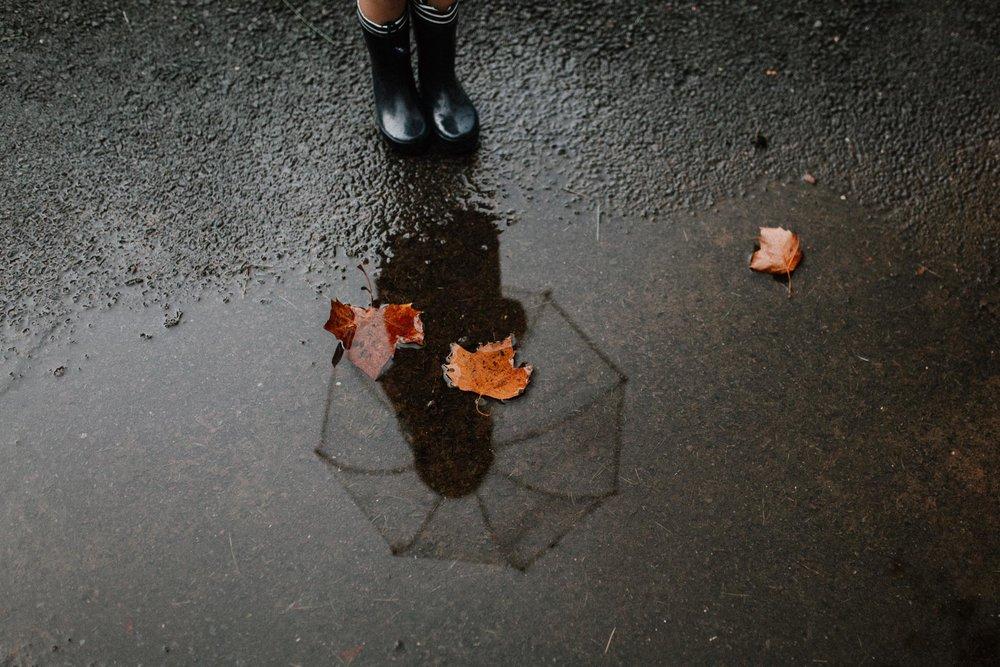 Rain puddle umbrella rainboots reflection orange leaves Toddler Girl Ashburn Virginia Lifestyle Documentary Family Marti Austin Photography