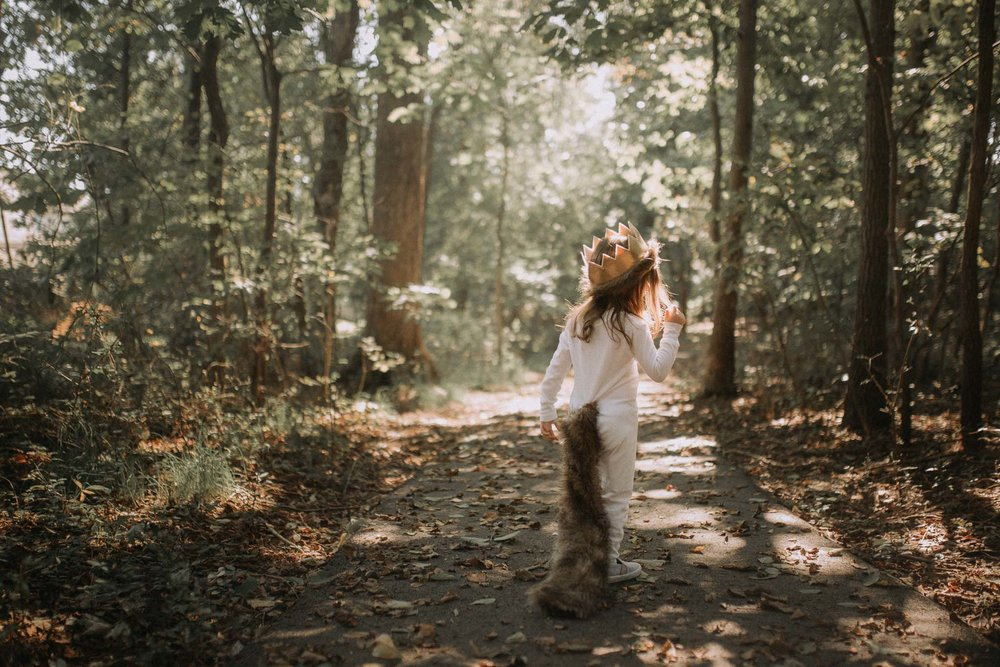 Toddler costume Where The Wild Things Are Max Ashburn Loudoun Virginia Lifestyle Documentary Family Marti Austin Photography