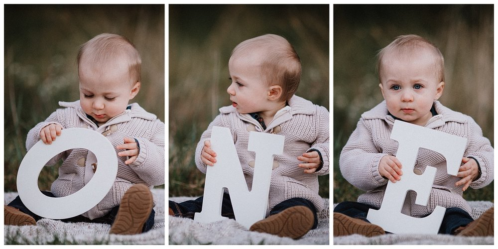 baby boy one year old portrait collage fall autumn family lifestyle documentary Heritage Farm Museum Claude Moore Park Sterling Virginia Marti Austin Photography