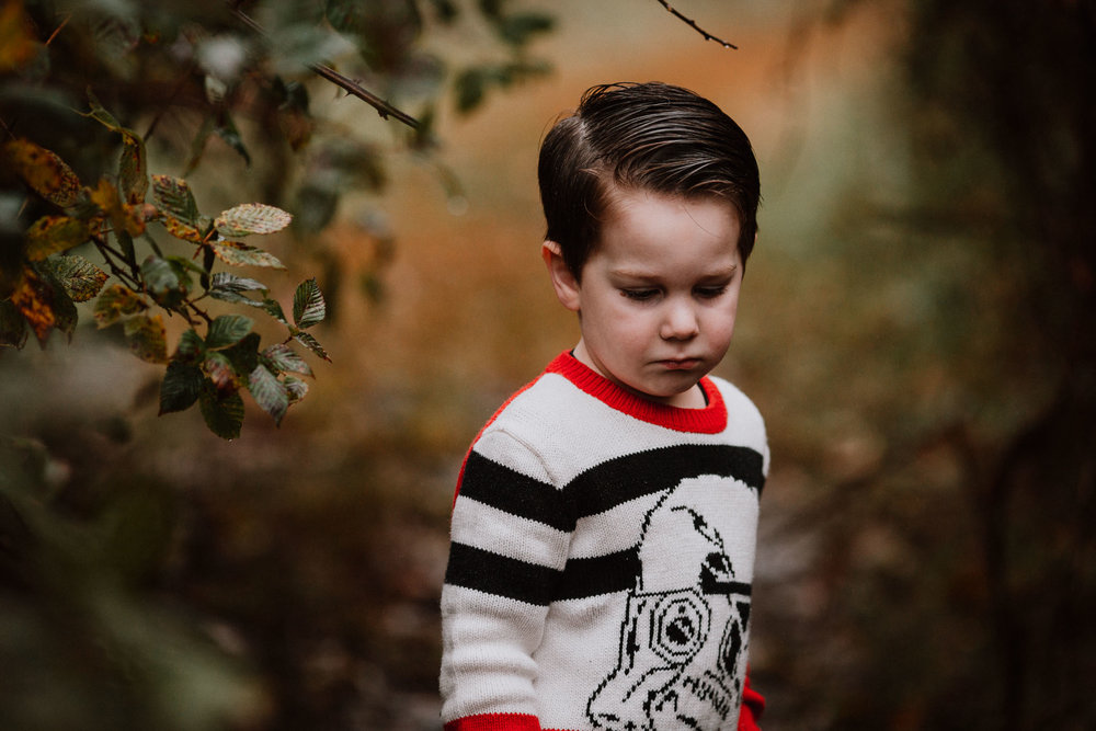 toddler boy portrait fall autumn childhood family lifestyle documentary Rust Nature Sanctuary Leesburg Virginia Marti Austin Photography