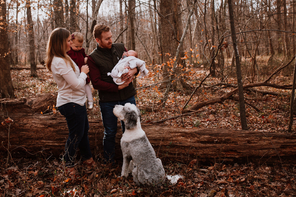 family of four outdoor mother father son daughter dog pet lifestyle documentary family Great Falls Virginia Marti Austin Photography