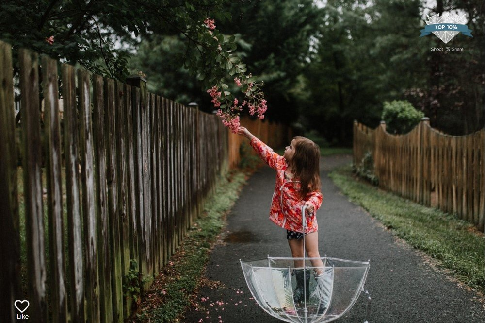girl umbrella pink flowers lifestyle documentary ashburn loudoun virginia shoot and share contest Marti Austin Photography