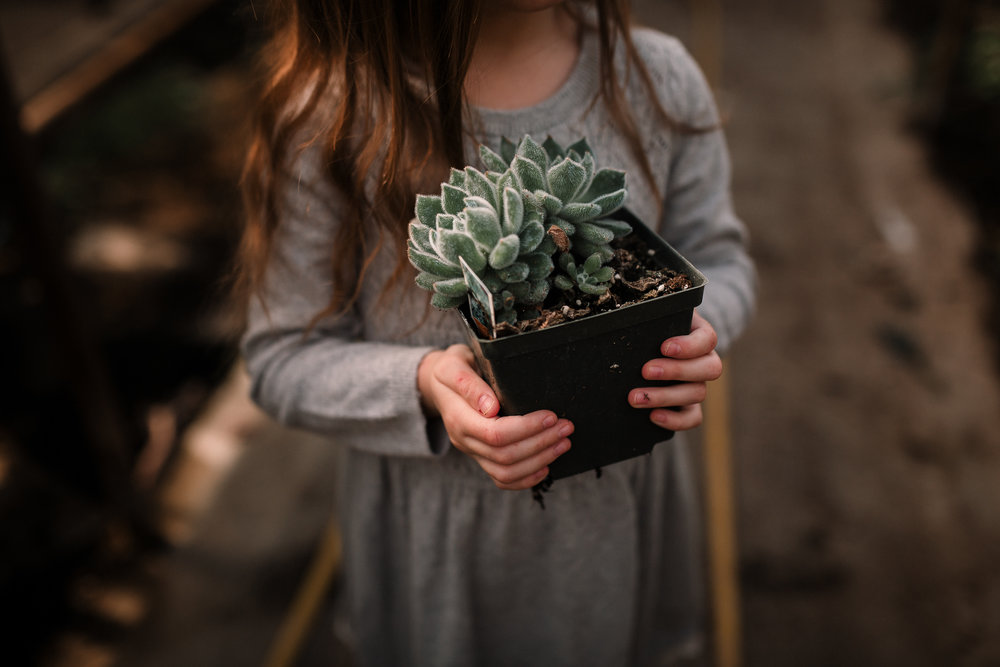 succulent hands plant details greenhouse lifestyle documentary family Ashburn Loudoun northern Virginia  childhood Marti Austin Photography