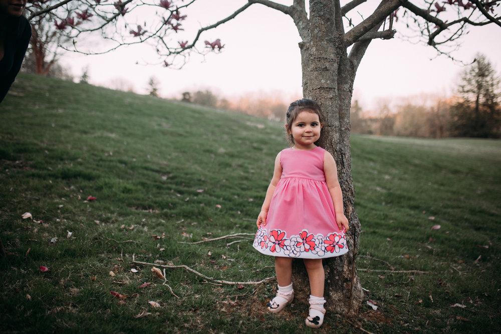toddler girl magnolia tree lifestyle documentary family maternity Morven Park Leesburg Loudoun Virginia Spring Golden Hour Sunset Marti Austin Photography