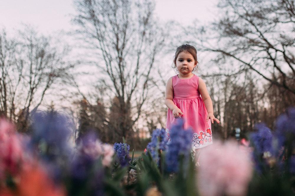 toddler flowers pink purple lifestyle documentary family maternity Morven Park Leesburg Loudoun Virginia Spring Golden Hour Sunset Marti Austin Photography