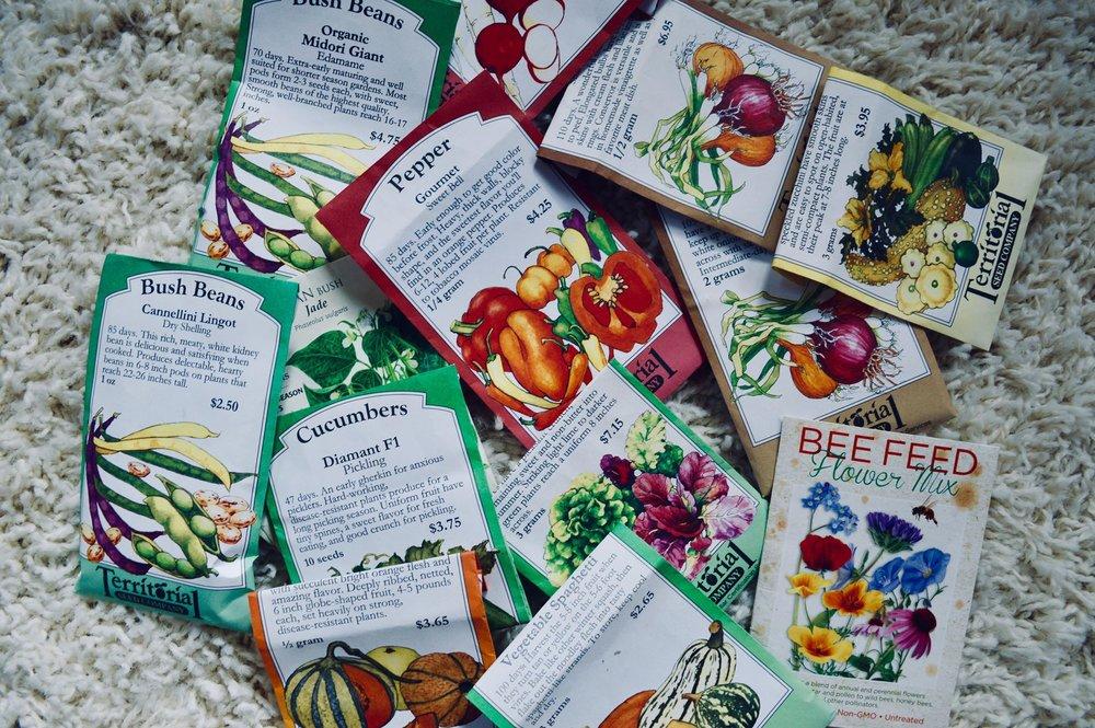 territorial seed company, garden seeds, vegetable seeds, wildflower seeds, garden planning, homesteading, gardening