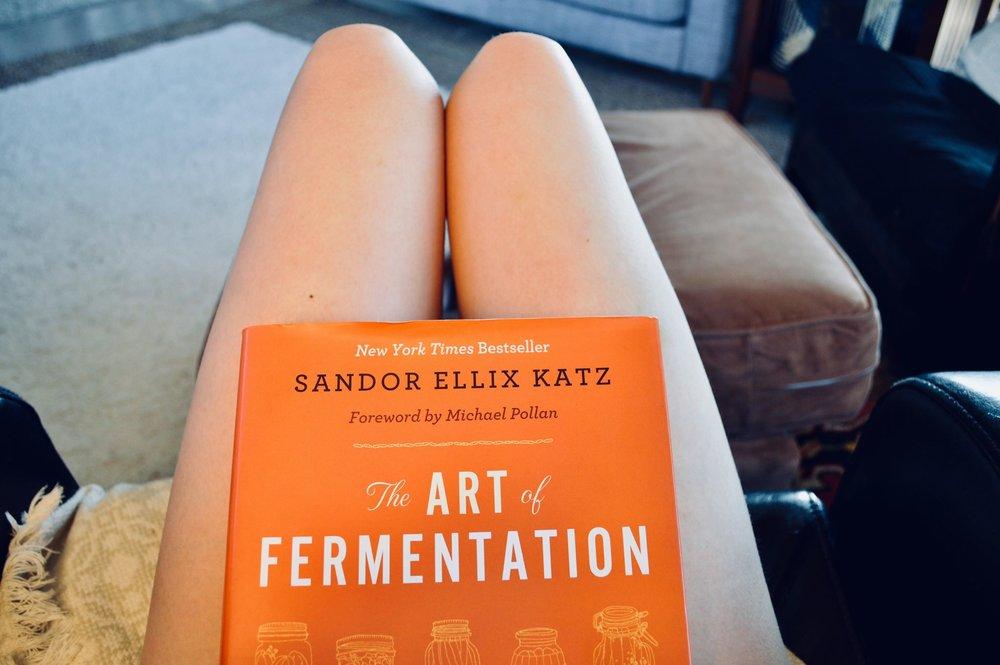 sandor katz, the art of fermentation, kombucha, fermenting, brewing, homesteading, modern homestead, farmher