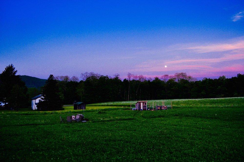 moonrise, full moon, moon, may, new york, homestead, modern homestead, backyard chickens