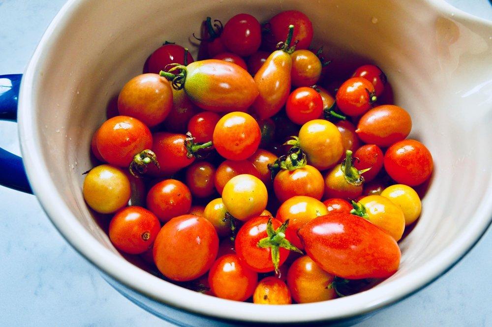 plant based, vegan, garden salsa, homemade salsa, fresh salsa, salsa recipe, garden tomatoes