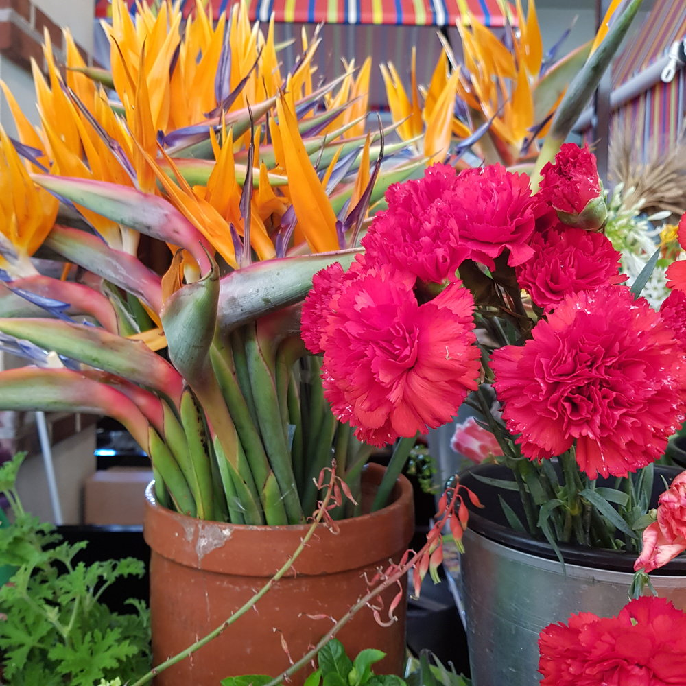 ladycameleon-madere-marché-fleurs-funchal.jpg