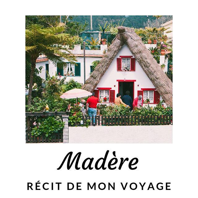 | MADERE | Si tu es à la recherche d'une destination pour tes prochaines vacances, peut-être que mon récit de voyage à Madère pourra t'aider ! Tu connais cette jolie île portugaise ? RDv sur le blog pour en savoir plus et retrouver mes conseils (lien dans ma bio). #madere #madeira #portugal #récitdevoyage #carnetdevoyage #destinationdevoyage #travel_lover #globetrotteuse #conseilvoyage #europe #ladycameleon #travelblog #travelblogger
