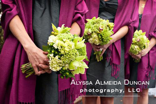 Alyssa Almeida Duncan Photography, LLC