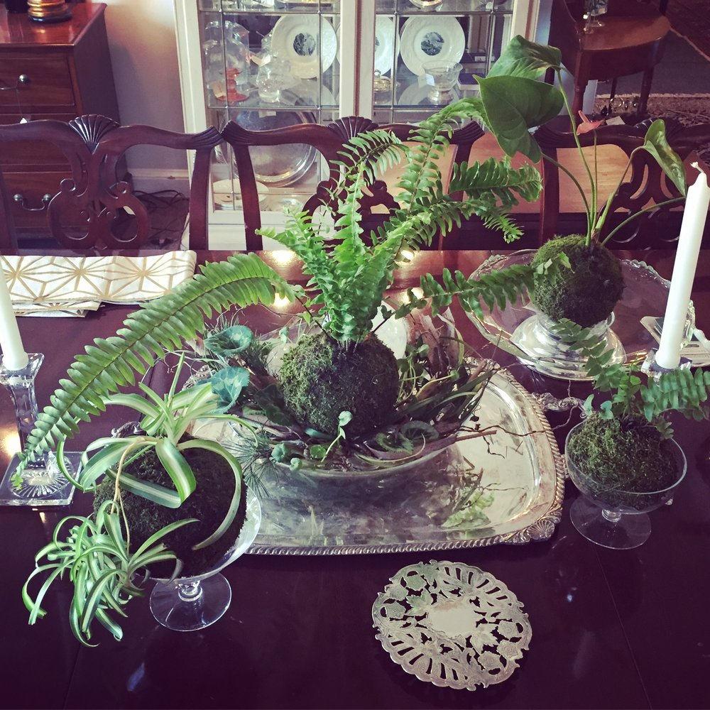 an array of kokedama on vintage sterling and cake plates