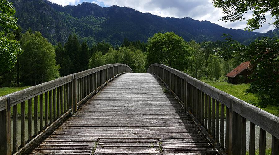 path-journey900.jpg